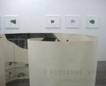 Adrienne Wong:New Work - installation view