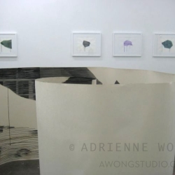 Adrienne Wong:New Work - installation view